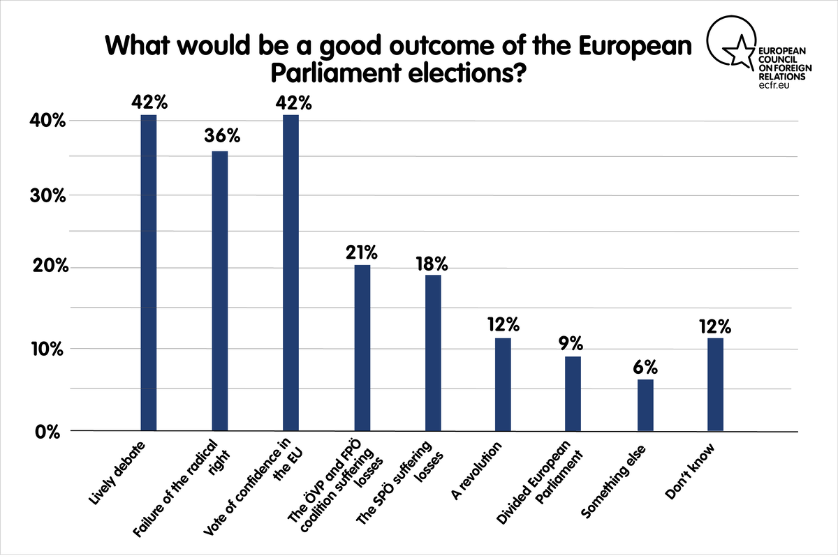 What in your view would be a GOOD outcome of the European Parliament elections?