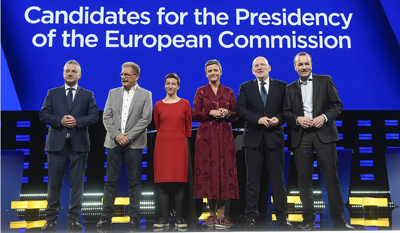 Views from the Capitals: European elections