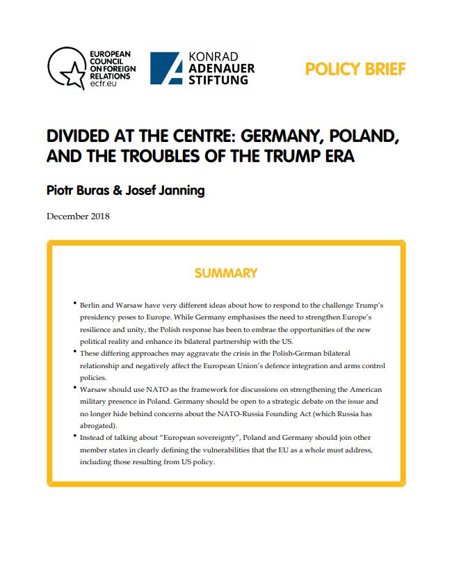 Cover: Dividida en el centro: Alemania, Polonia y los problemas de la era Trump