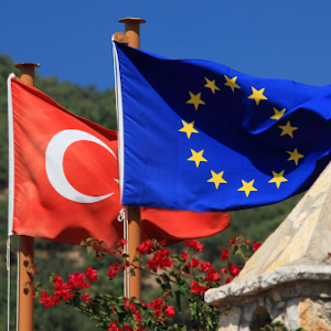 "Main image for ""Many elephants in the room: the EU and the Turkey, Syria, coronavirus and refugee crises"" podcast"