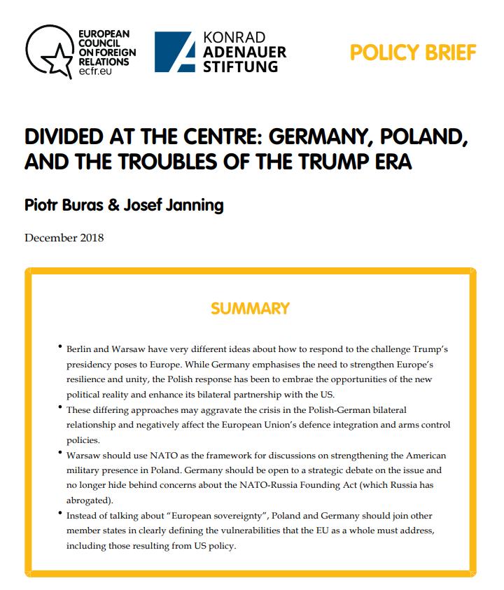 Cover: Divisées par le centre : L'Allemagne, la Pologne et les vicissitudes de l'ère Trump