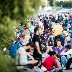 Cover: ECFR's World in 30 Minutes: East - West divide on refugee crisis?