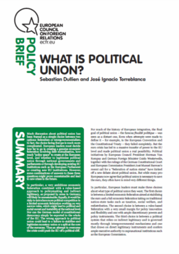 Cover: What is political union?