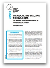 Cover: The good, the bad and the Gülenists