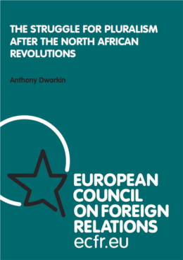 Cover: The struggle for pluralism after the North African revolutions