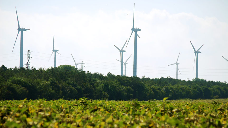 A wind farm in a field in Bulgaria